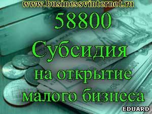 образец бизнес план для получения субсидии от центра занятости - фото 8